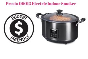 Budget-friendly indoor Electric Smoker